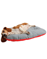 Coussin canin